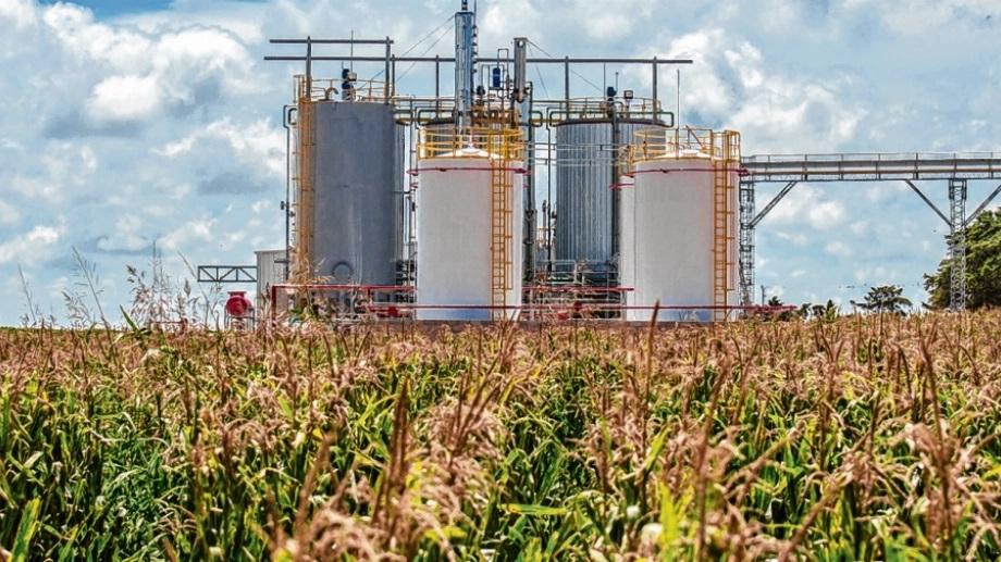 Biocombustible-argentina